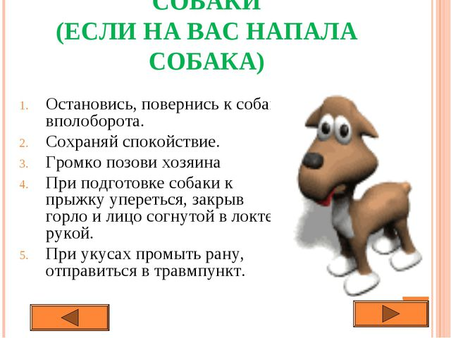 СОБАКИ (ЕСЛИ НА ВАС НАПАЛА СОБАКА) Остановись, повернись к собаке вполоборота...