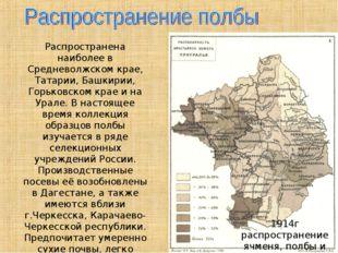 1914г распространение ячменя, полбы и льна Распространена наиболее в Среднево