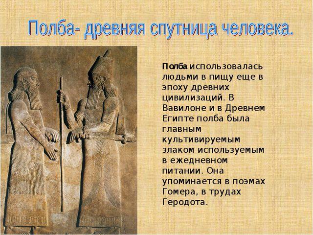 Полбаиспользовалась людьми в пищу еще в эпоху древних цивилизаций. В Вавило...