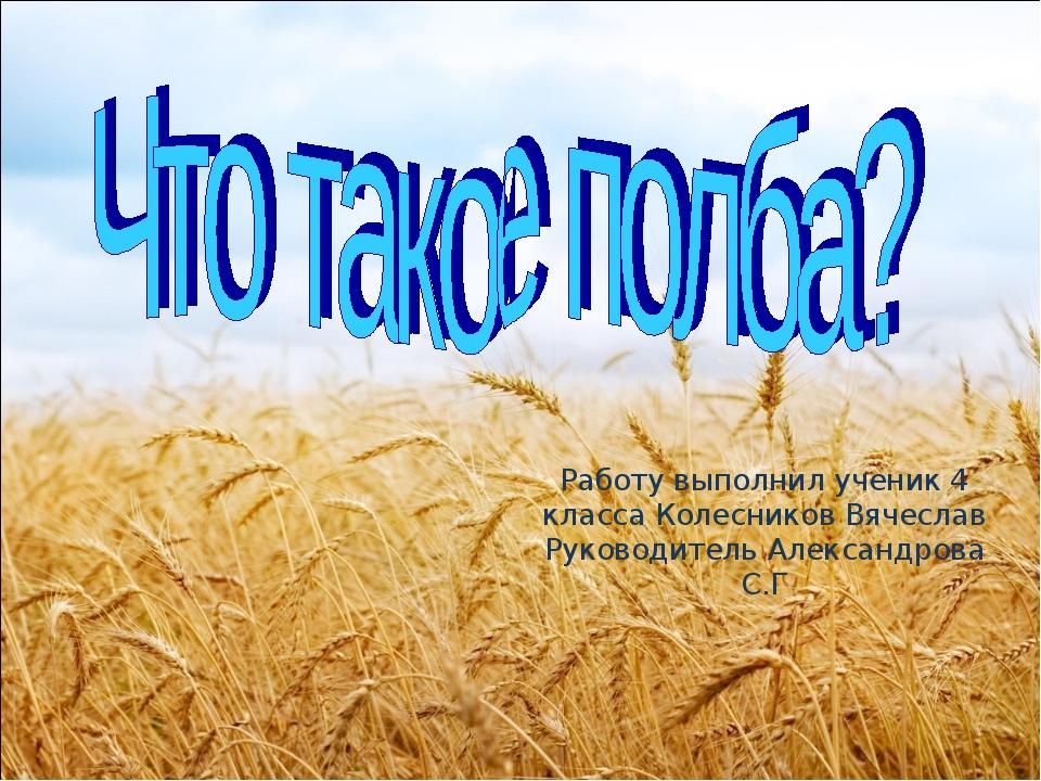 Работу выполнил ученик 4 класса Колесников Вячеслав Руководитель Александрова...