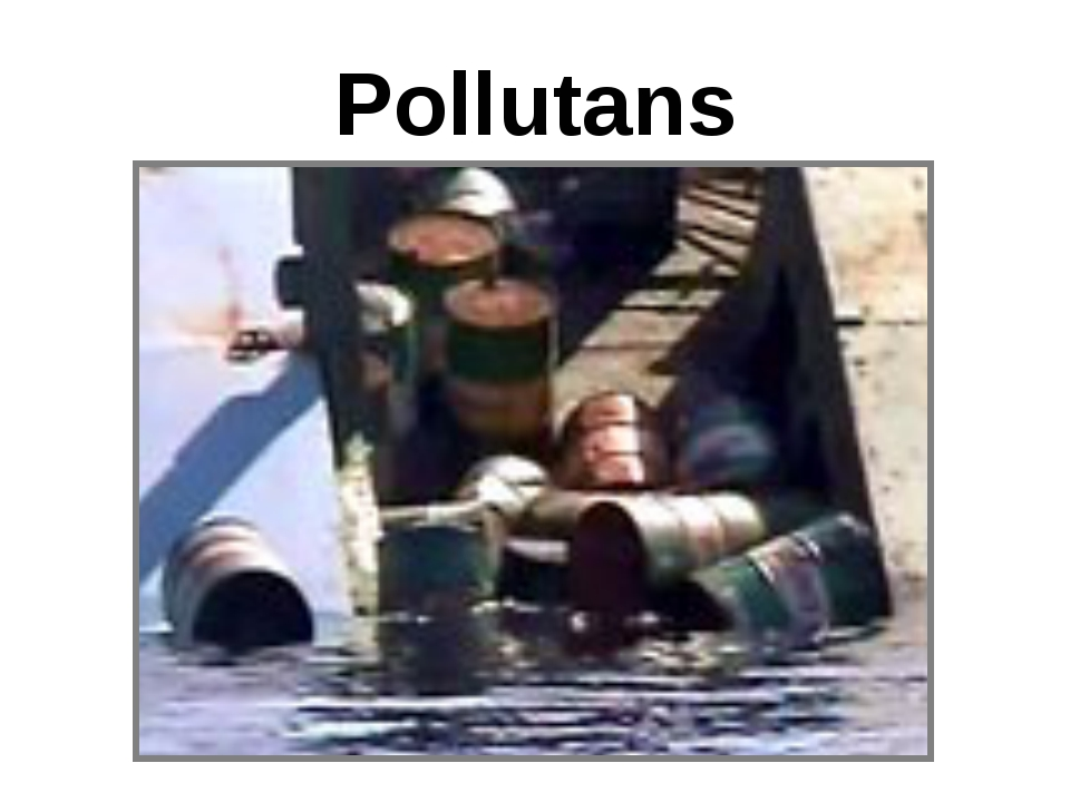 Pollutans