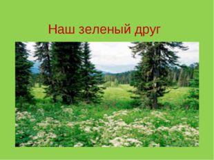 Наш зеленый друг