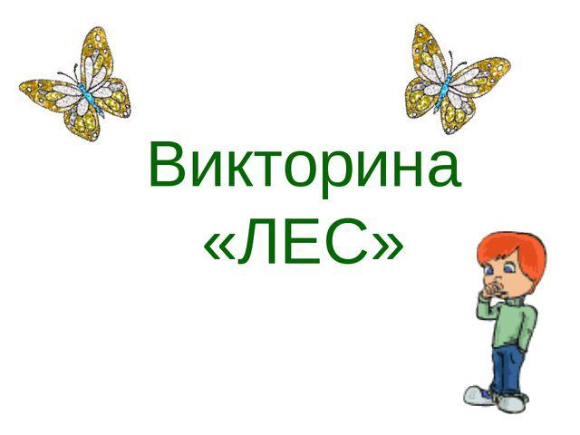 Викторина «ЛЕС»