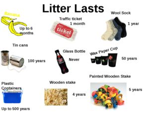 Banana peel Litter Lasts Up to 6 months Traffic ticket 1 month Wool Sock 1 ye