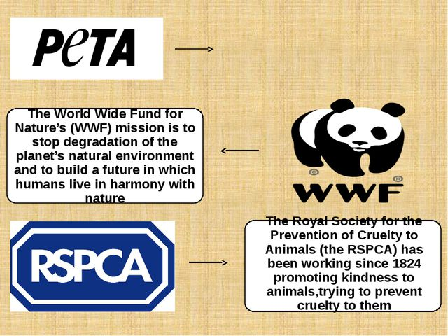 The World Wide Fund for Nature's (WWF) mission is to stop degradation of the...