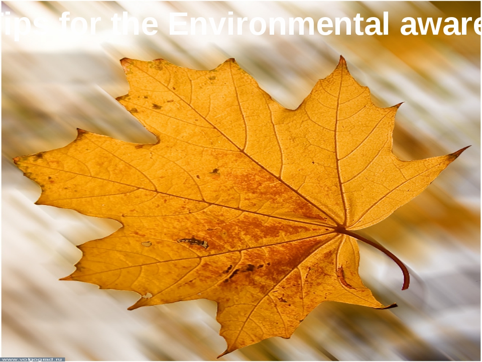 Tips for the Environmental aware