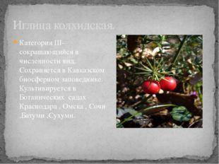 Категория III- сокращающийся в численности вид. Сохраняется в Кавказском биос