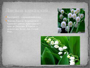 Категория II – сокращающийся вид. Эндемик Кавказа. Встречается от Крымского р
