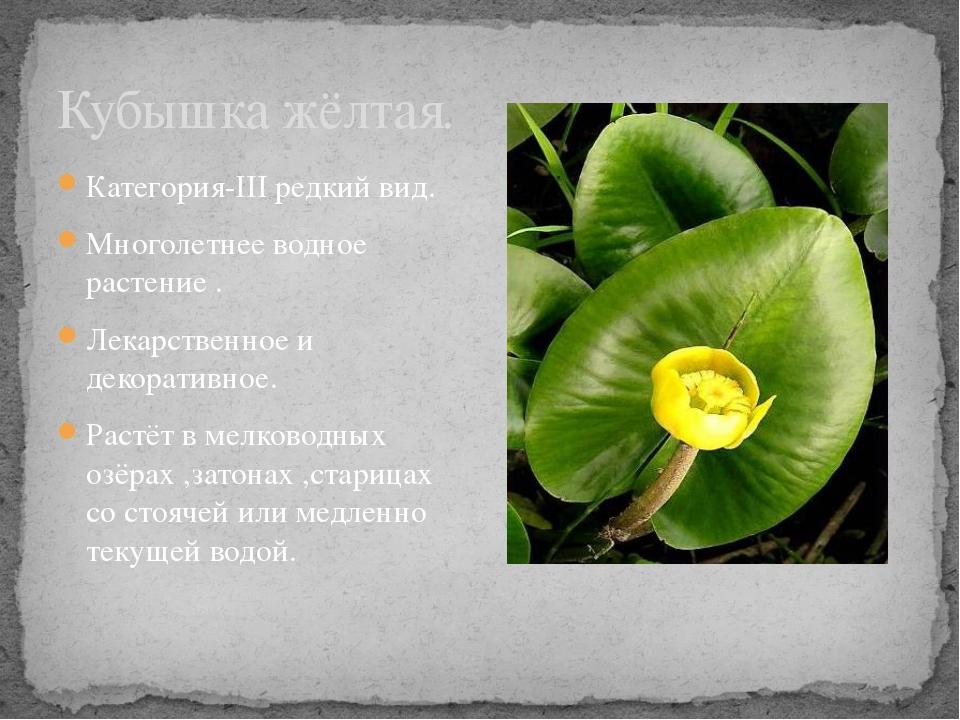 Категория-III редкий вид. Многолетнее водное растение . Лекарственное и декор...