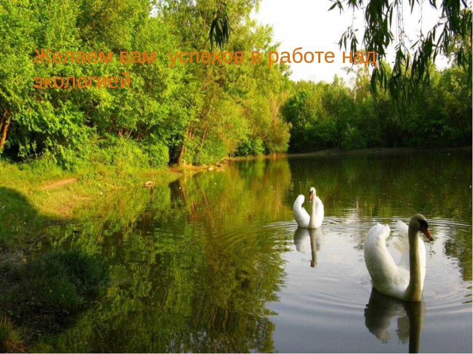 Желаем вам успехов в работе над экологией