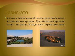 Оазис-это клочок зеленой влажной земли среди необъятных желтых песков пустыни