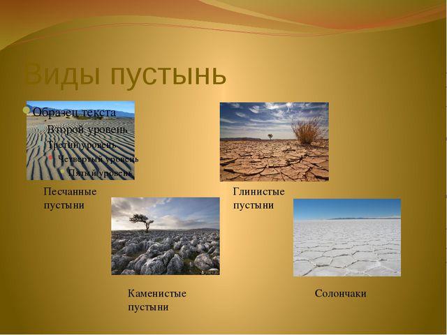 Виды пустынь Песчанные пустыни Глинистые пустыни Каменистые пустыни Солончаки