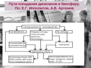 Пути попадания диоксинов в биосферу. По: Е.Г. Ипполитов, А.В. Артемов