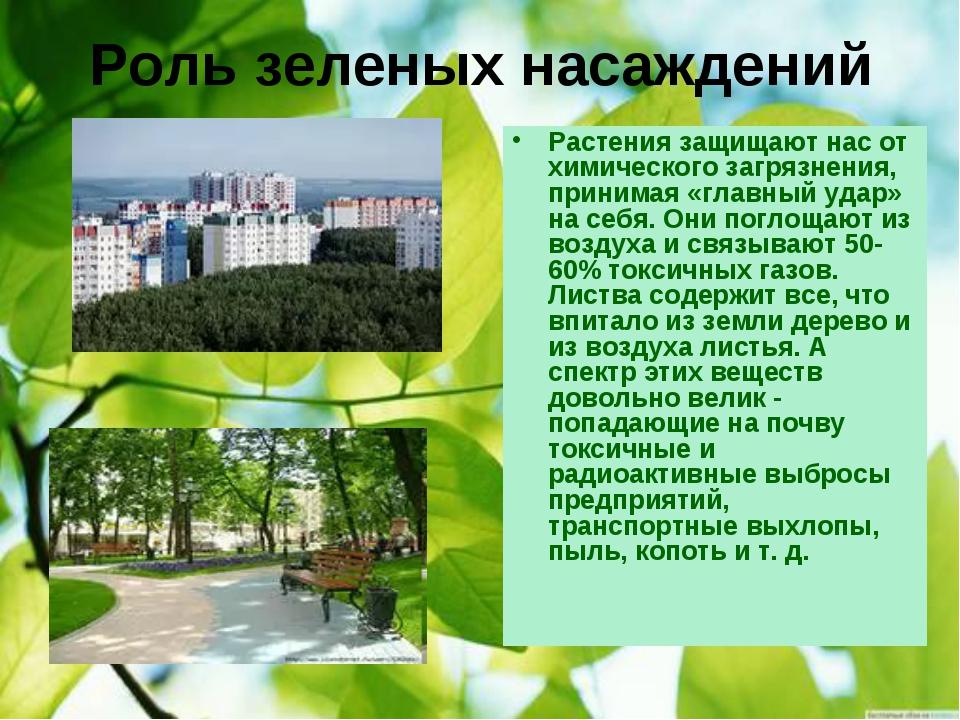 Роль зеленых насаждений Растения защищают нас от химического загрязнения, при...