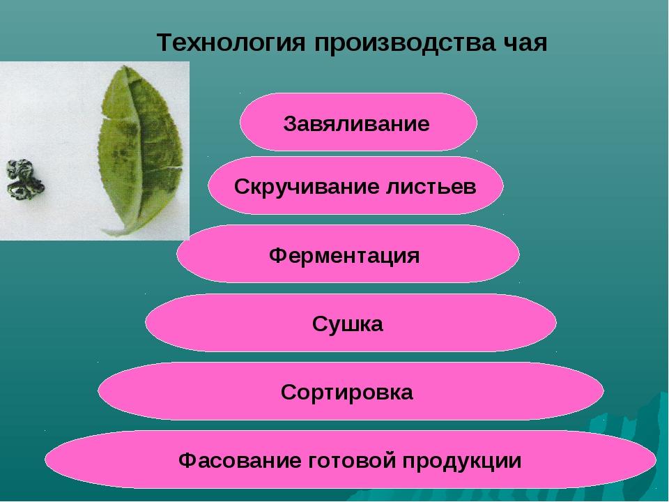 Скручивание листьев Завяливание Ферментация Сушка Сортировка Фасование готово...