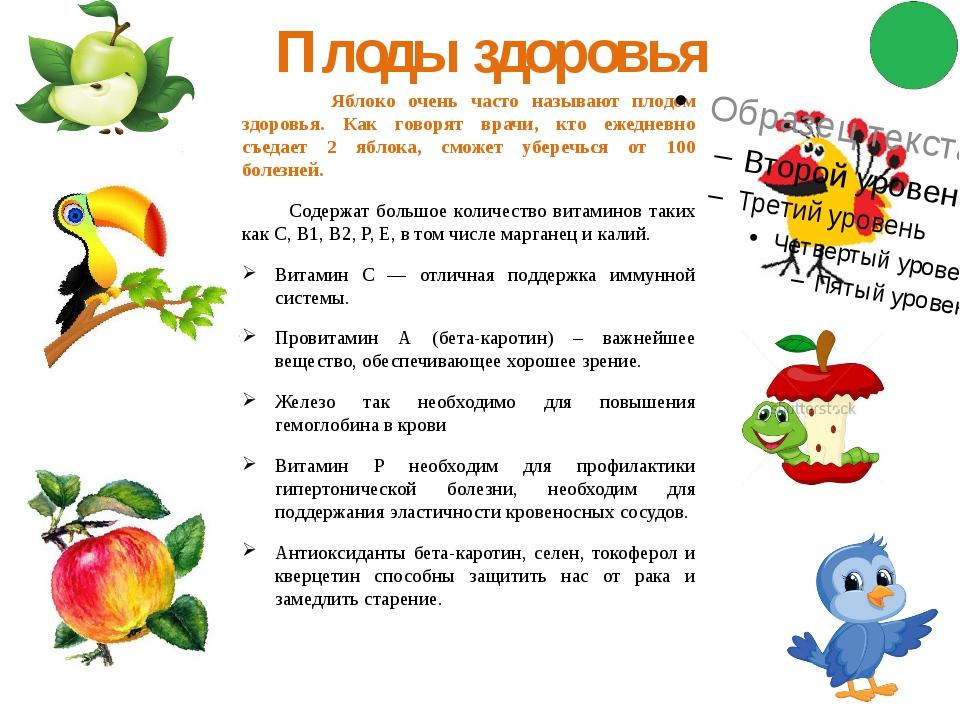 Плоды здоровья Яблоко очень часто называют плодом здоровья. Как говорят врачи...