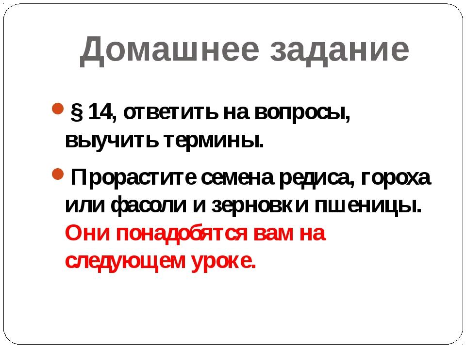 Домашнее задание § 14, ответить на вопросы, выучить термины. Прорастите семен...