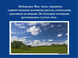 Побережье Ика было украшено удивительными полянами цветов, сенокосами, краси