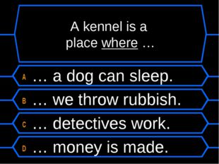 A kennel is a place where … A … a dog can sleep. B … we throw rubbish. C … de
