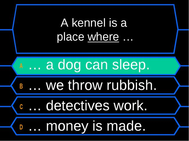 A kennel is a place where … A … a dog can sleep. B … we throw rubbish. C … de...