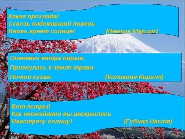 Какая прохлада! Сквозь набежавший ливень Вновь греет солнце! (Немков Максим)...