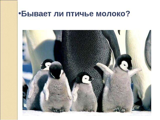 Бывает ли птичье молоко?