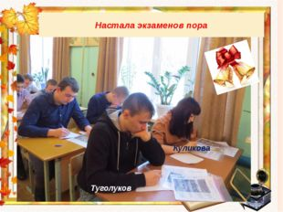 Настала экзаменов пора Туголуков Куликова