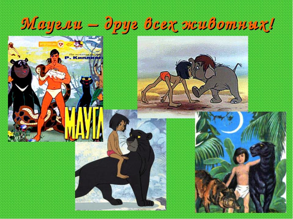 Маугли – друг всех животных!