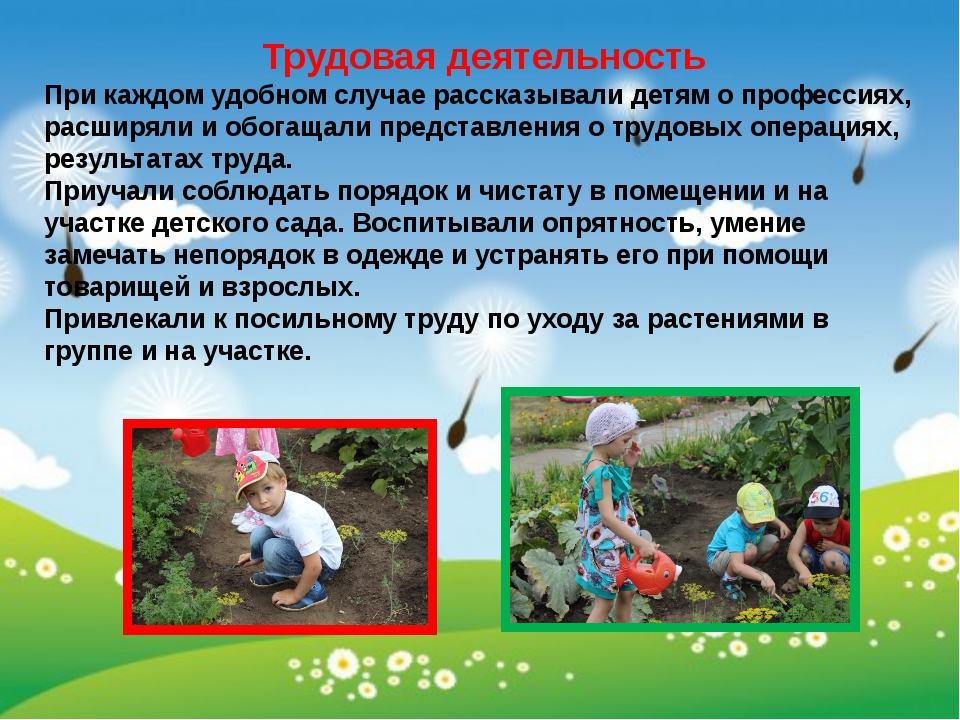 Трудовая деятельность При каждом удобном случае рассказывали детям о професси...