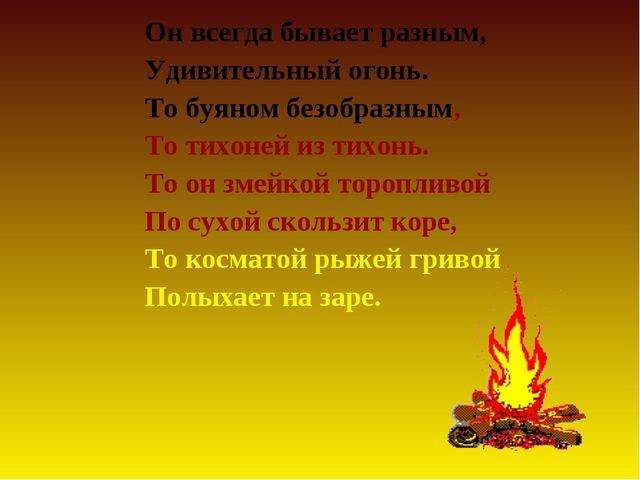 Он всегда бывает разным, Удивительный огонь. То буяном безобразным, То тихоне...