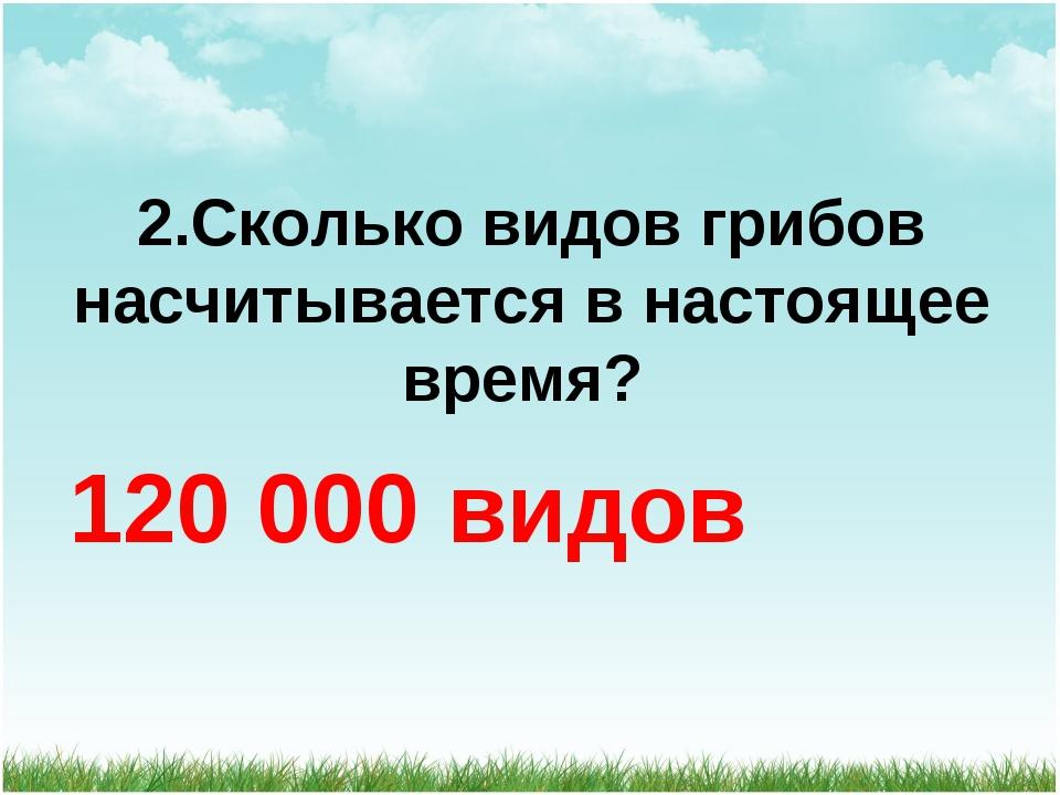 2.Сколько видов грибов насчитывается в настоящее время? 120 000 видов