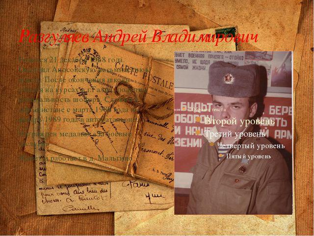 Разгуляев Андрей Владимирович Родился 21 декабря 1968 года. Окончил Аносовску...