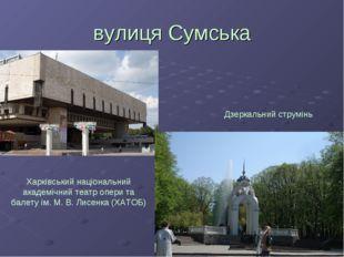 вулиця Сумська Харківський національний академічний театр опери та балету ім.