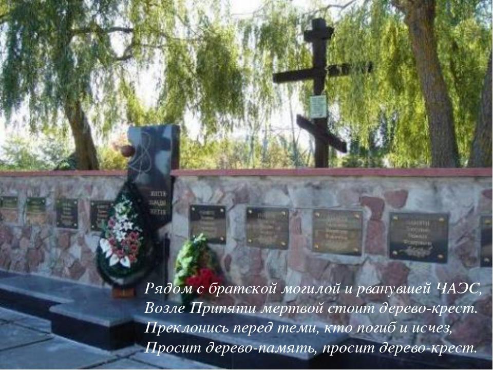 Рядом с братской могилой и рванувшей ЧАЭС, Возле Припяти мертвой стоит дерево...