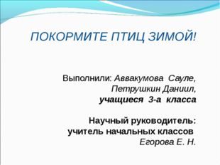 ПОКОРМИТЕ ПТИЦ ЗИМОЙ! Выполнили:Аввакумова Сауле, Петрушкин Даниил, учащиеся