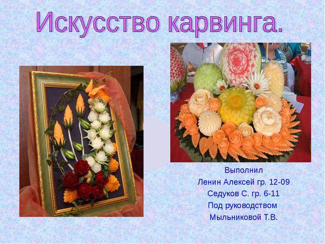 Выполнил Ленин Алексей гр. 12-09 Седуков С. гр. 6-11 Под руководством Мыльни...