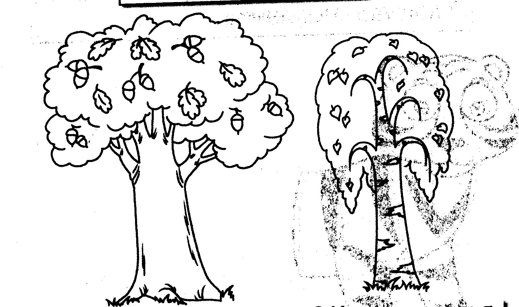 I:\картинки\рисунки\дерево.bmp