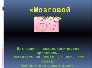 «Мозговой штурм» Бактерии - микроскопические организмы. Появились на Земле 3