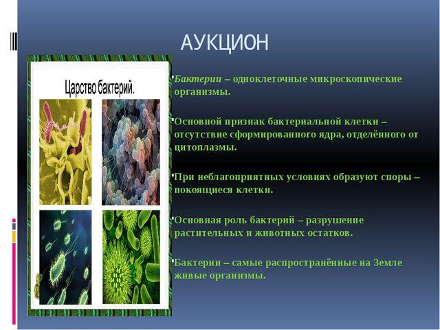 АУКЦИОН Бактерии – одноклеточные микроскопические организмы. Основной признак...