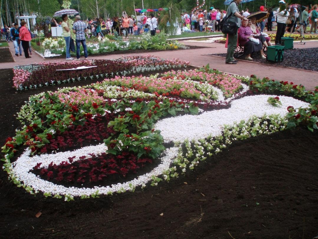 C:\Users\Юрбан\Desktop\фестиваль цветов\P7110093.JPG