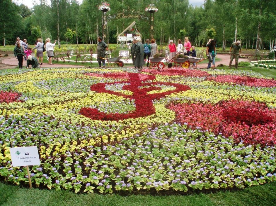 C:\Users\Юрбан\Desktop\фестиваль цветов\P7110067.JPG