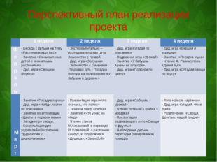 Перспективный план реализации проекта  1 неделя 2 неделя 3 неделя 4 неделя Ф