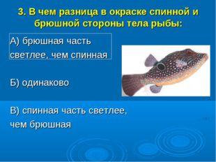 3. В чем разница в окраске спинной и брюшной стороны тела рыбы: А) брюшная ча