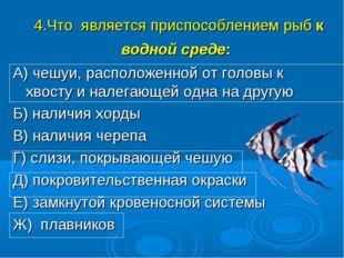 4.Что является приспособлением рыб к водной среде: А) чешуи, расположенной от