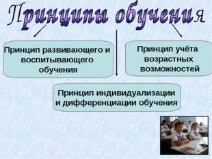 Принцип развивающего и воспитывающего обучения Принцип индивидуализации и диф