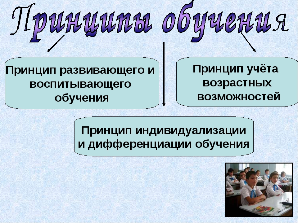 Принцип развивающего и воспитывающего обучения Принцип индивидуализации и диф...