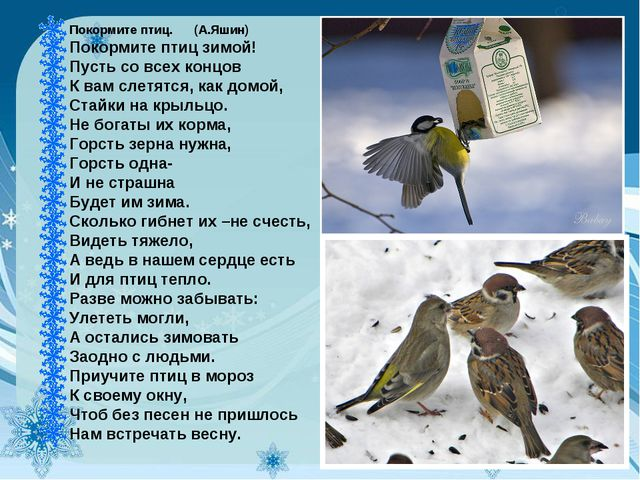 Покормите птиц.(А.Яшин) Покормите птиц зимой! Пусть со всех концов К ва...