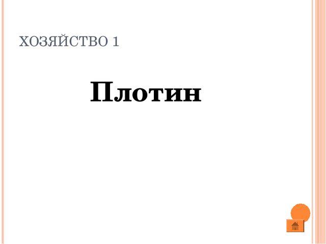 ХОЗЯЙСТВО 1 Плотин