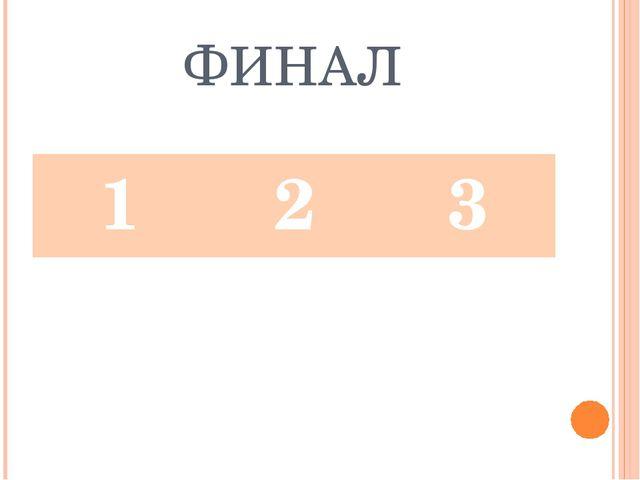 ФИНАЛ 123