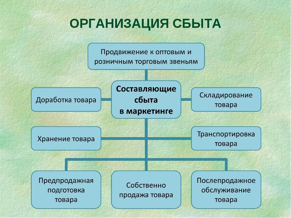 ОРГАНИЗАЦИЯ СБЫТА